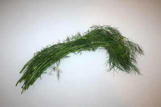 12 - Zutat Dill / Ingredient dill