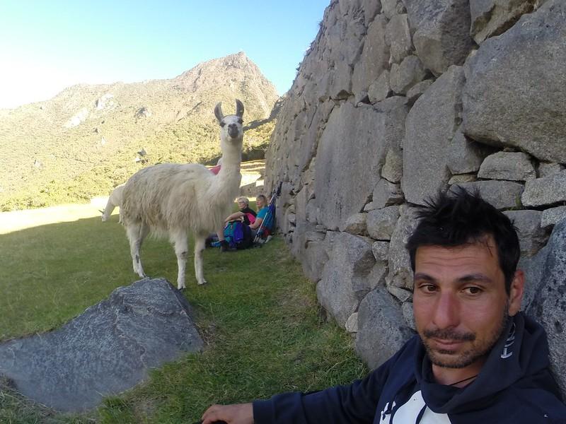 150726 Machuuu Picchu (119) (1500 x 1125)