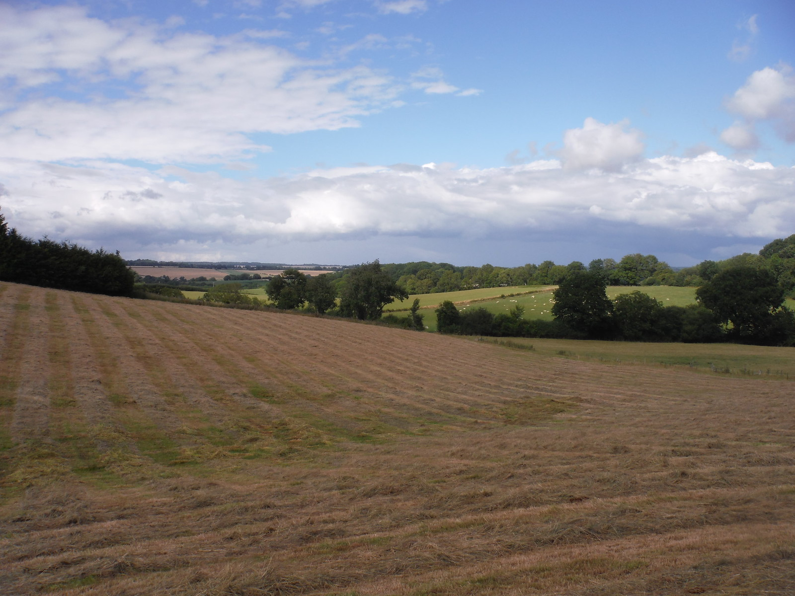 View from Converted Cottage SWC Walk 252 Tisbury Circular via Donhead St. Andrew