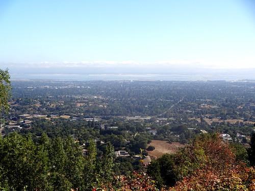 Silicon Valley1