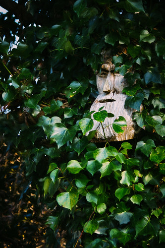 Gerry Foley's Sculpture at Gleniff Barytes Mill, Sligo, Ireland
