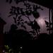 Lightning by matzAB_