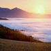 Overberg Foggy Sunrise by Panorama Paul