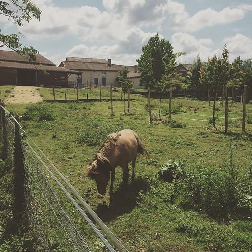 L'ancienne ferme de la famille de mon beau-père <3