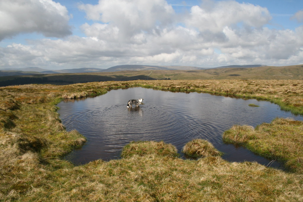 Tarn on Great Shunner Fell