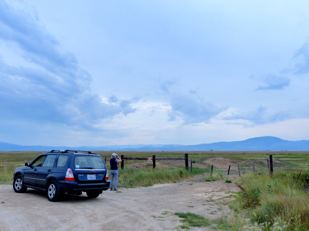 Birding the Sierra Valley