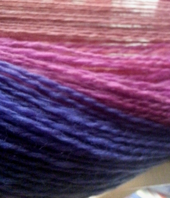 Into the Whirled Falkland Batt in Excursion Colorway on Swift from back