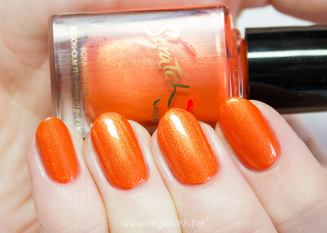 nailsincscratch-063