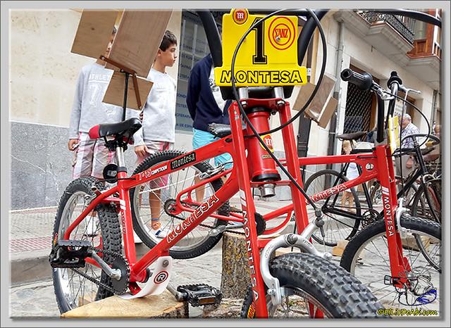15 Exposición de bicicletas antiguas