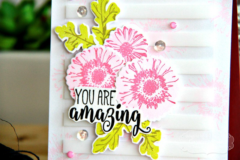 You are amazing closeup