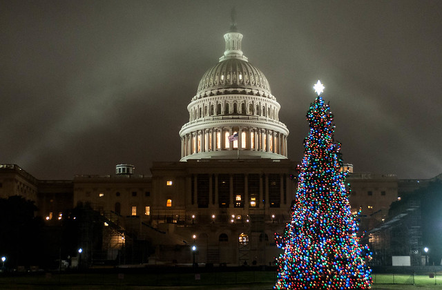 U.S. Capitol and Capitol Christmas Tree