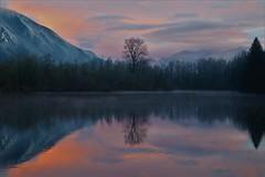Borst Lake / Mill Pond, Snoqualmie WA