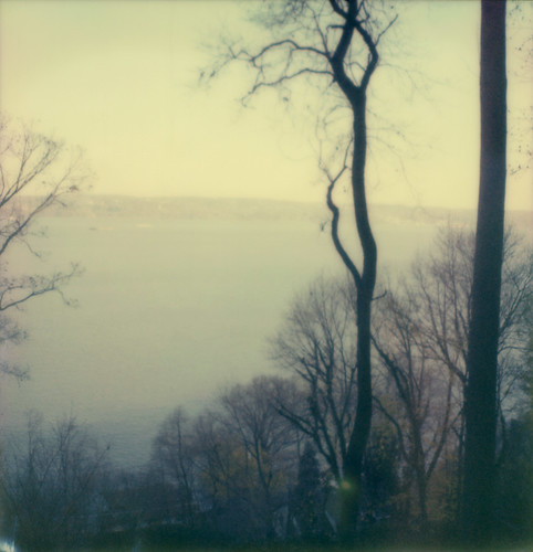hudson river path trees forest nyack film instant theimpossibleproject color600 slr680