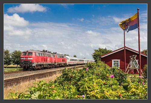 2x218, Hattstedt, 22.07.2015