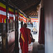 Small photo of Sri Lanka