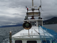 釣魚 20歳台船長 - naniyuutorimannen - 您说什么!