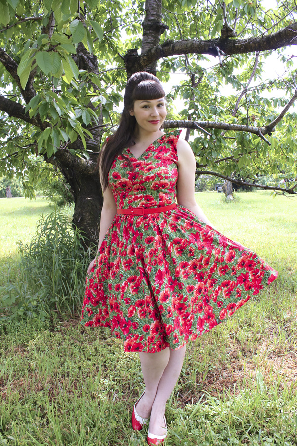 bernie dexter poppy dress