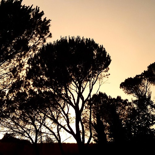 #theGIRA: tramonto a Certaldo