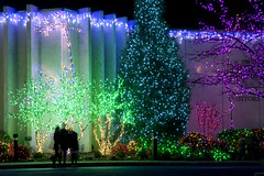 2016 National LDS Temple Christmas Lighting _31