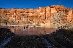 Little Dominguez Canyon (1-29-17)