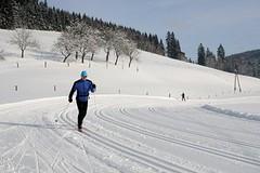 Běžkaři si mohou užít ve Velkých Karlovicích ideální podmínky