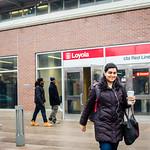 2017 Loyola Lens (01/20 - 02/02)