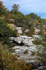 Des défilés calcaires en Sud Ardèche