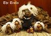 The Trolls by jettyart13