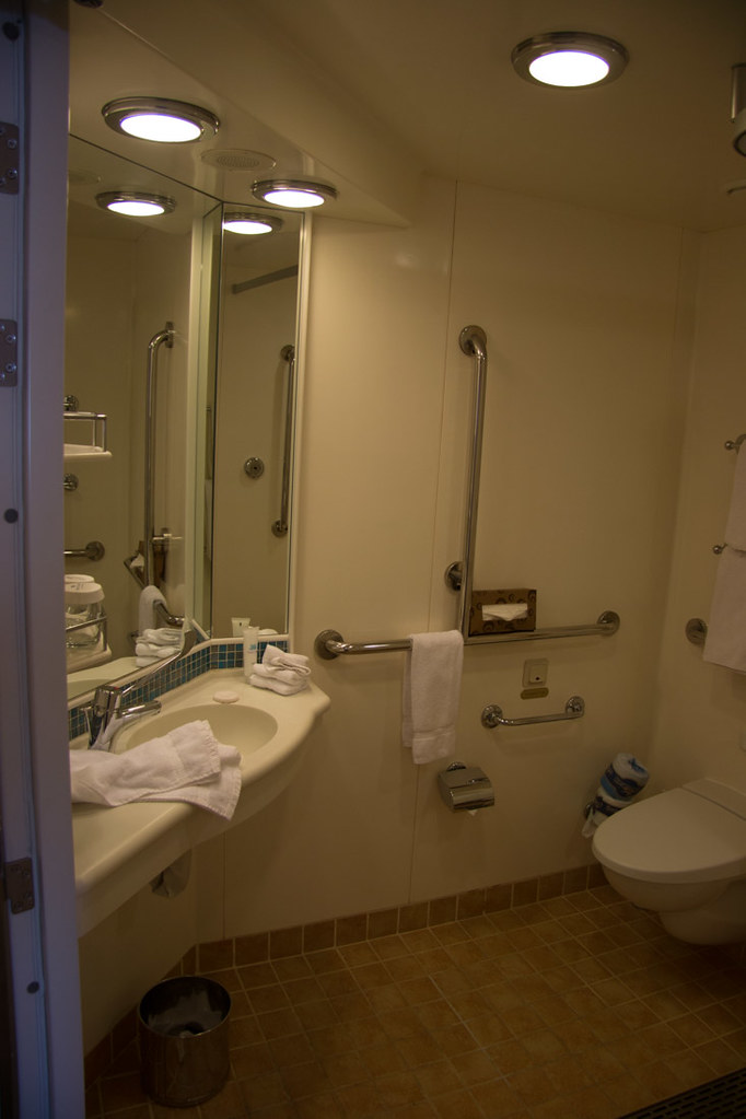 Accessible bathroom in Ruby Princess Cabin