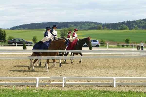 2006 Dressur und Fahrtage