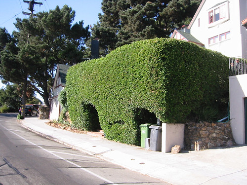 blob hedge house by cs@sf