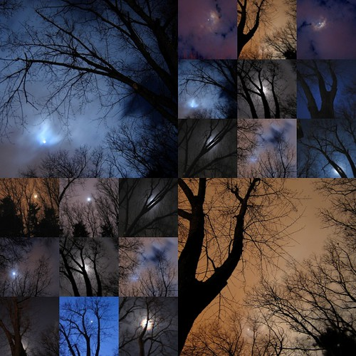 moon night sky trees 2*9s 2*1s mosaic