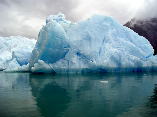 Iceberg, Tracy Arm