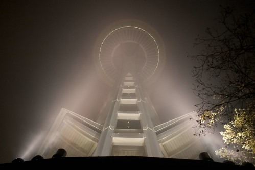 needle through the fog
