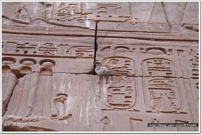 2005 Egypt d6 040