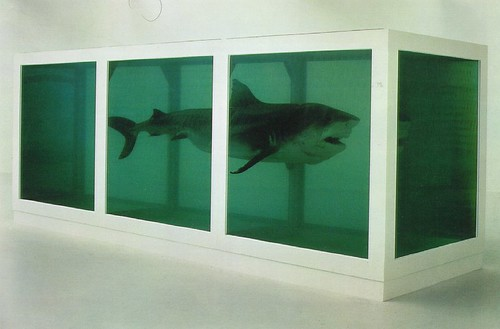 The Physical Impossibility of Death in the Mind of Someone Living - 1991 glass,  steel, silicone, formaldehyde, shark (213x2640x213cm)