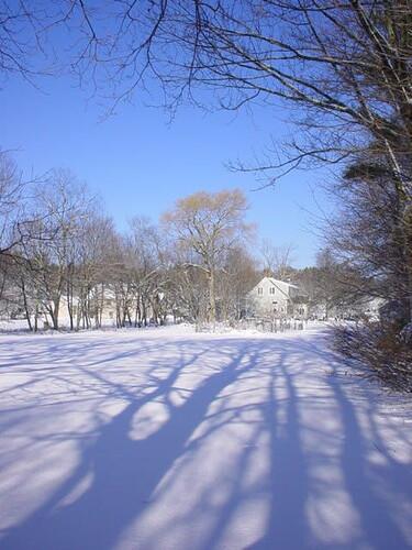 winter 0506