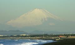 Mt. Fuji from Shounan