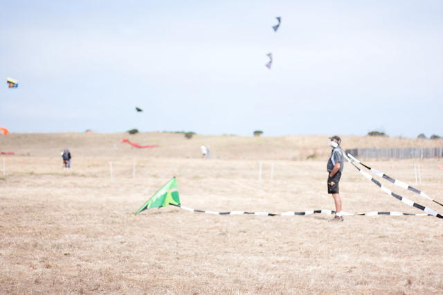 Fallen Kite