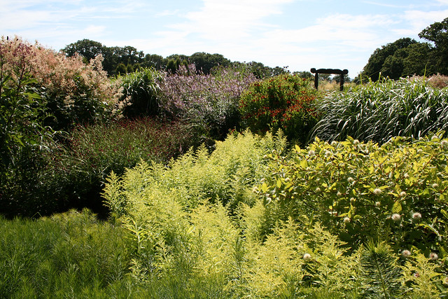 Sussex Prairie gardens