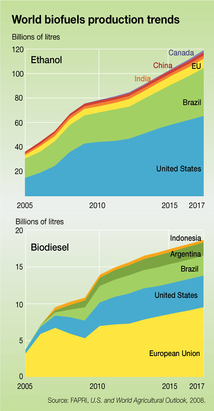 World Biofuels Production Trends Grid Arendal