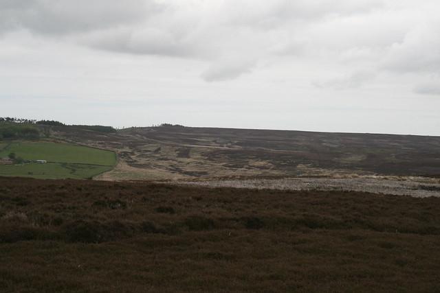 Gisborough Moor from Great Ayton Moor