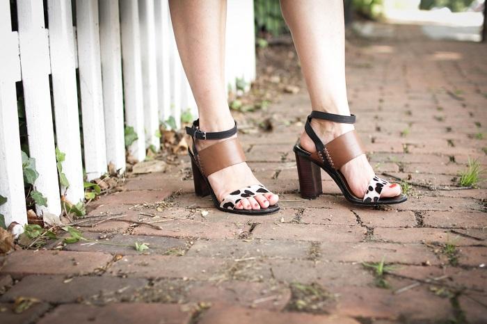 dv dolce vita heels.