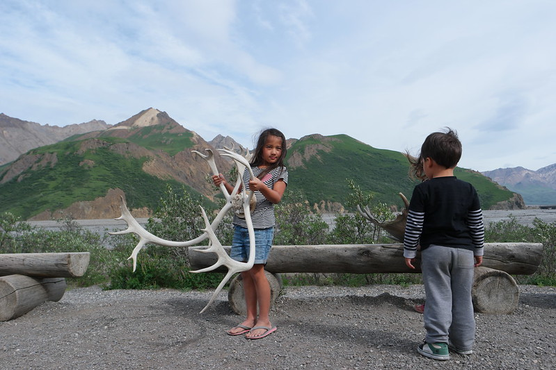 Blog Alaska Denali