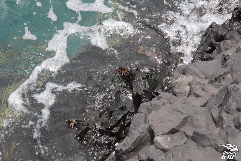 澎湖北海33