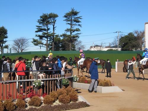 中山競馬場の検量室前に集まる観衆