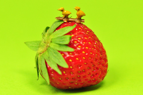 Makrofotografie Fotoexperiment Erdbeere Pfennig Pfennigstück Größenvergleich kleine Metalltiere Glas-Enten Glückschwein Glückspfennig Foto Brigitte Stolle