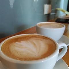 hong kong-style milk tea(0.0), salep(0.0), espresso(1.0), cappuccino(1.0), flat white(1.0), cup(1.0), cortado(1.0), coffee milk(1.0), caf㩠au lait(1.0), coffee(1.0), ristretto(1.0), coffee cup(1.0), caff㨠macchiato(1.0), caff㨠americano(1.0), drink(1.0), latte(1.0), caffeine(1.0),
