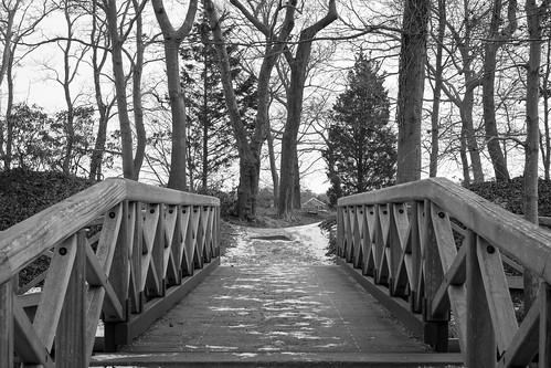 Bayard Cutting Creek Bridge