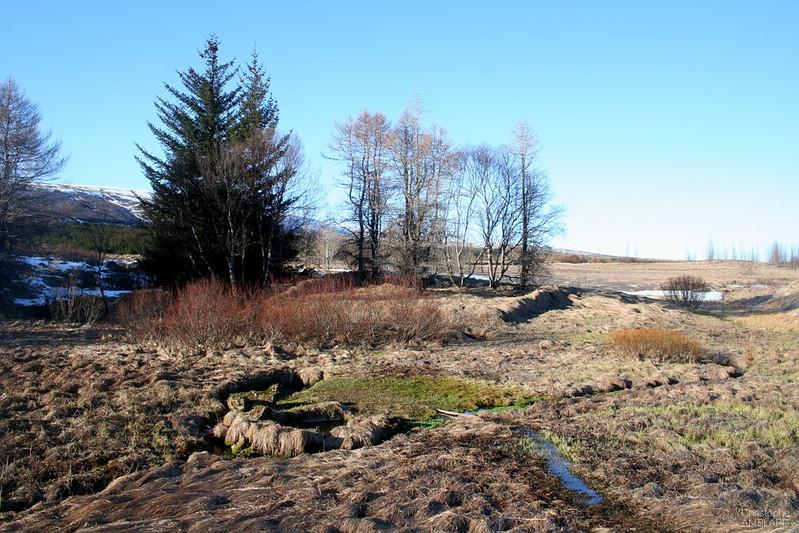 Source géothermale, déjà utilisée par les Vikings